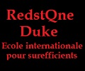 La saga littéraire Redstone Duke (école internationale pour surefficients)